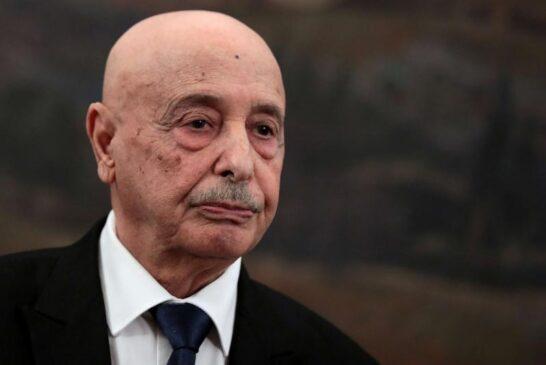 Libya's parliament speaker in Rome