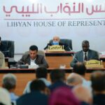 """HoR committee calls for sanctions against elections """"obstructionists"""""""