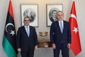 Libya's HCS chairman, Turkish FM discuss December elections
